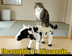 Meanwhile, In Wisconsin...
