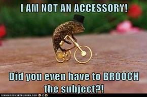 I AM NOT AN ACCESSORY!  Did you even have to BROOCH the subject?!