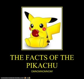 THE FACTS OF THE PIKACHU