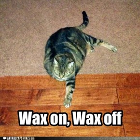 Wax on, Wax off