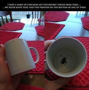 Tastes Like Cockroach