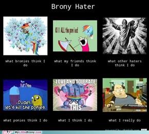 Brony Haters