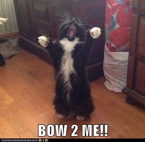 BOW 2 ME!!