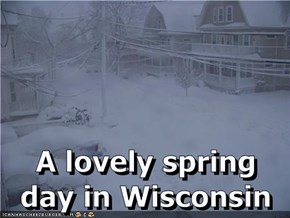 A lovely spring day in Wisconsin