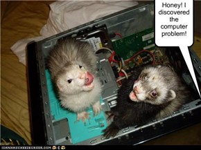 Honey! I discovered the computer problem!