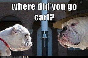where did you go carl?