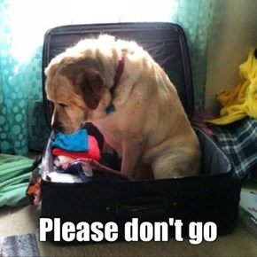 Don't Go!