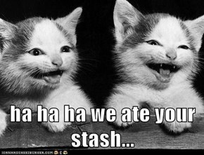 ha ha ha we ate your stash...
