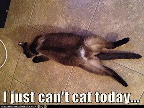 I just can't cat today...