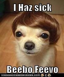 I Haz sick  Beebo Feevo