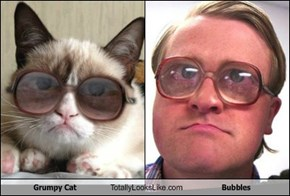 Grumpy Cat Totally Looks Like Bubbles
