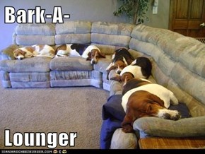 Bark-A-  Lounger