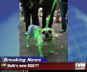 Breaking News - Hulk's new DOG??
