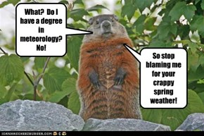 This is What You Get With Rodent-Based Weather Predictions