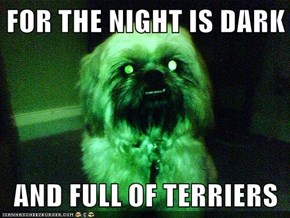 FOR THE NIGHT IS DARK  AND FULL OF TERRIERS