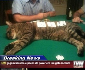 Breaking News - jogam baralho e pecas de poker em um gato incente