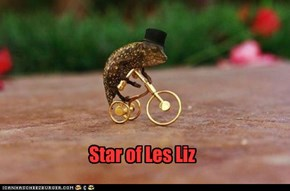 Star of Les Liz