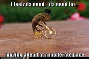 A Golden Trike is Crazy Enough...