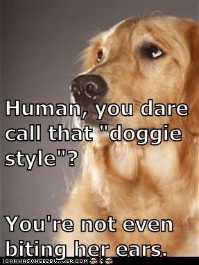 "Human, you dare call that ""doggie style""? You're not even biting her ears."