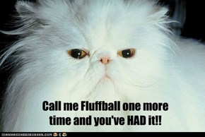 Call me Fluffball one more  time and you've HAD it!!