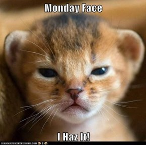 Monday Face  I Haz It!