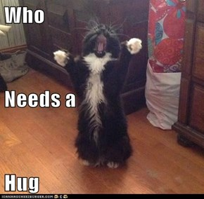 Who  Needs a Hug
