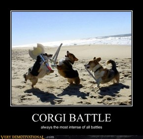 CORGI BATTLE