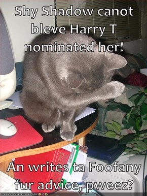 Shy Shadow canot bleve Harry T nominated her!  An writes ta Foofany fur advice, pweez?