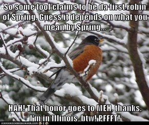 So some fool claims to be da first robin of Spring. Guess it depends on what you mean by Spring...  HAH! That honor goes to MEH, thanks. I'm in Illinois, btw! PFFFT!