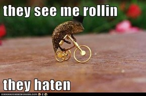 they see me rollin  they haten
