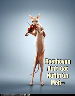 Beethoven  Ain't  Got Nuffin On Meh--
