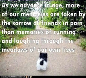To all my friends in pain...whether physical or emotional...I think of you always