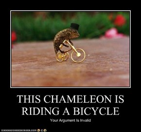 THIS CHAMELEON IS RIDING A BICYCLE