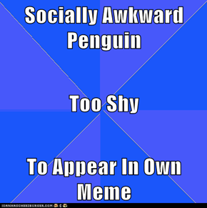 Socially Awkward Penguin  Too Shy  To Appear In Own Meme