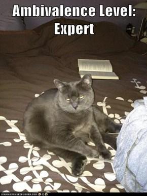 Ambivalence Level: Expert