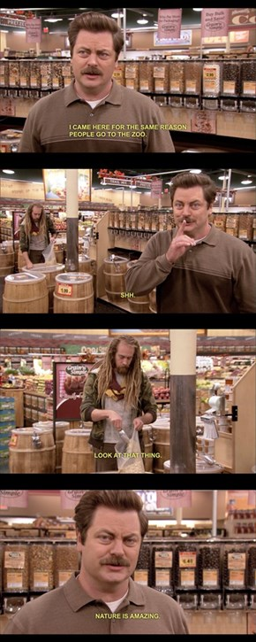 Ron Swanson at The Grocery Store