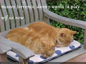 missez torrence, danny wants ta play wif us now