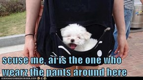 scuse me, ai is the one who wearz the pants around here