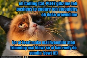 Grumpy Cat Prayz