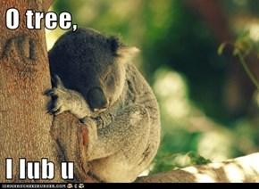 O tree,  I lub u