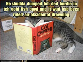 He shudda  dumped  teh  ded  burdie  in  teh  gold  fish  bowl  and  it  wud  hab  been ruled  an  aksidental  drowning.