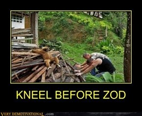 Zod Is a Sloth?