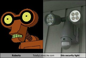 Roberto Totally Looks Like this security light