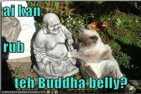 ai kan rub teh Buddha belly?