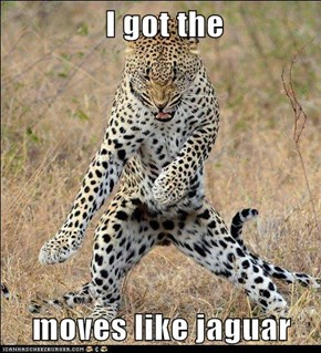 I got the   moves like jaguar