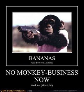 NO MONKEY-BUSINESS NOW