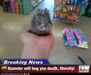 Breaking News - Hamster will hug you death, literelly!
