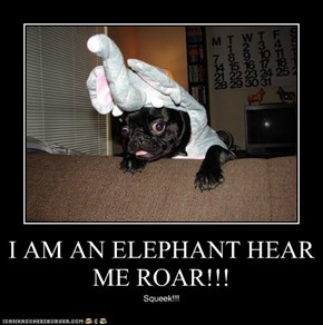 I AM AN ELEPHANT HEAR ME ROAR!!!
