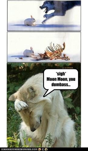 Moon Moon vs. Rabbit
