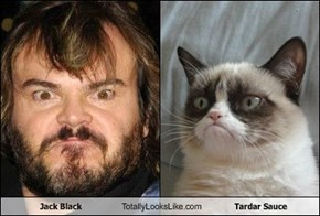 Jack Black Totally Looks Like Tardar Sauce